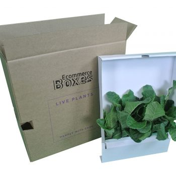 Horticulture Packaging